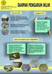 4.dampak fenomena iklim 2011.pdf