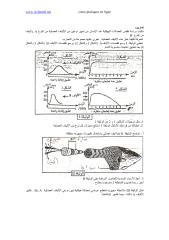 تمرين 1 في دور العضلة الهيكلية المخططة في تحويل الطاقة.pdf