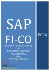 SAP-AR&AP.pdf