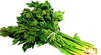 celery-foods-for-lowering-tension