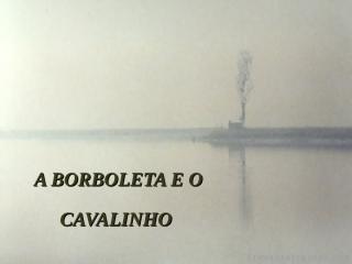 Apresentação - A Borboleta e o Cavalinho.pps