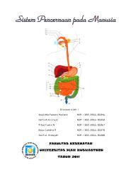 sistem pencernaan.pdf