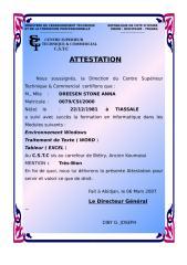 attest_DREESEN.doc